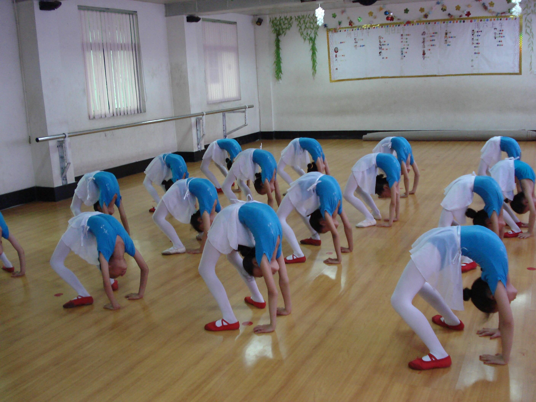 1,儿童民族民间舞 2,芭蕾(舞步,片段,基本功训练) 3,中国舞蹈家协会