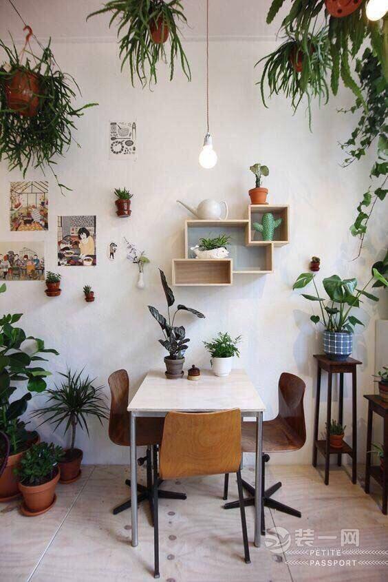 室内景观绿植设计