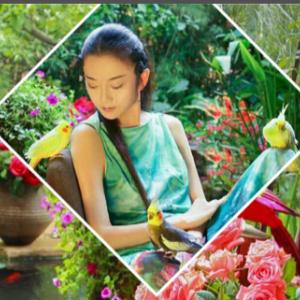 舞蹈艺术家杨丽萍的太阳宫别墅卧室风格