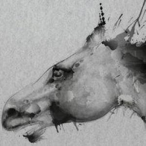 """一匹马一个人都要""""仗剑走天涯"""""""