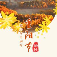 重阳节系列海报