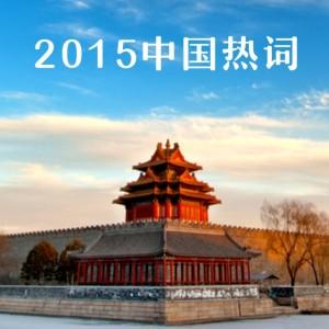 2015年中国热词