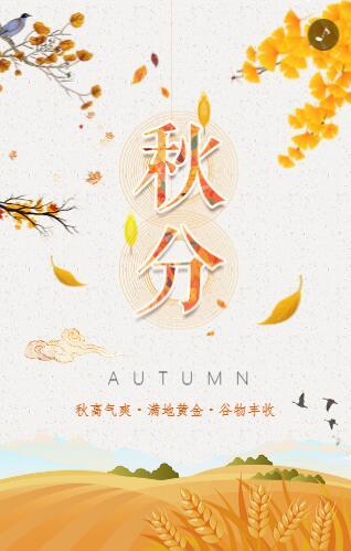 黄色落叶二十四节气秋分宣传模板