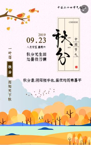 中式二十四节气秋分宣传模板