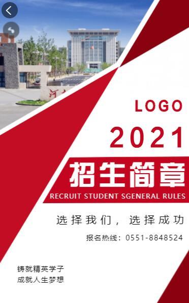红色简约大气2021大学招生简章