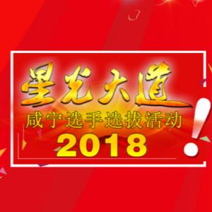 2018CCTV《星光大道》湖北地区选手选拔咸宁赛区报名通道