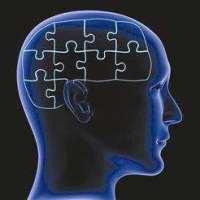 教育神经科学论坛邀请函